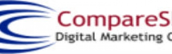 cheap seo services company agency in delhi india