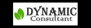 Dynamic Consultant