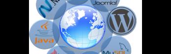 DomS IT Solutions Pvt. Ltd.