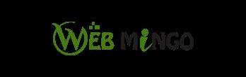 Web Mingo IT Solutions Pvt. Ltd.