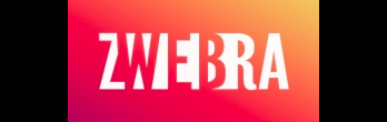Zwebra Web Studio Inc. - SEO in Saint John