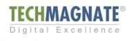 Techmagnate - SEO Company